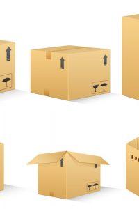vector illustration of different shape carton box